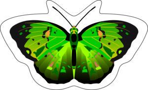 Бабочка клеевая